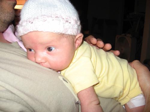 bebé bolçador